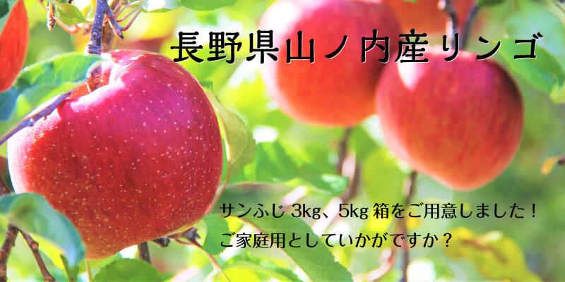ec8f46a7f98e3bcfd9941f2ea67c5211_山ノ内りんごをインターネットからご購入いただけるようになりました
