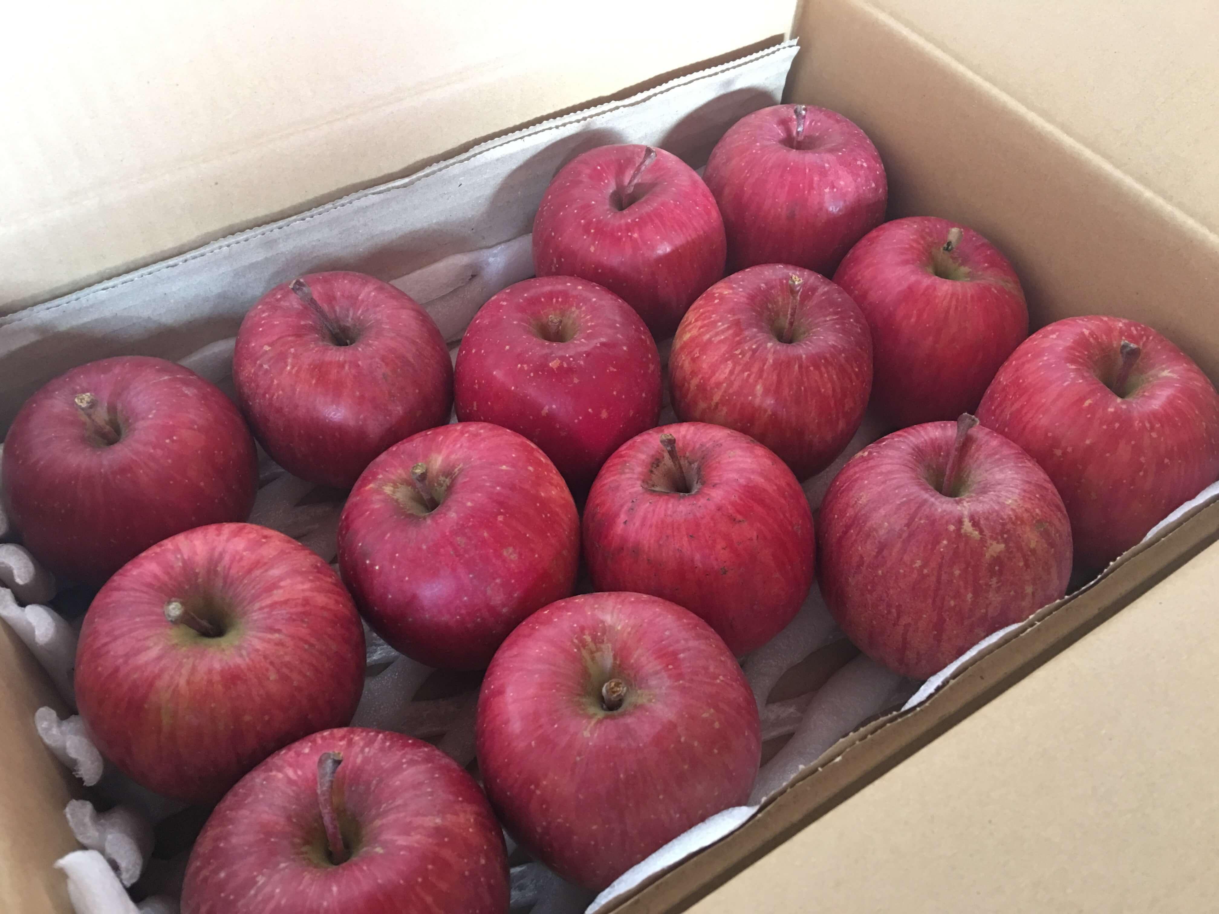 633e39000bf9dc783af6f9779fb2fa57_小玉りんごの販売を開始しました。