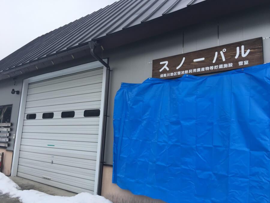 IMG_3449_天然雪の貯蔵庫 雪室スノーパルで鮮度保持